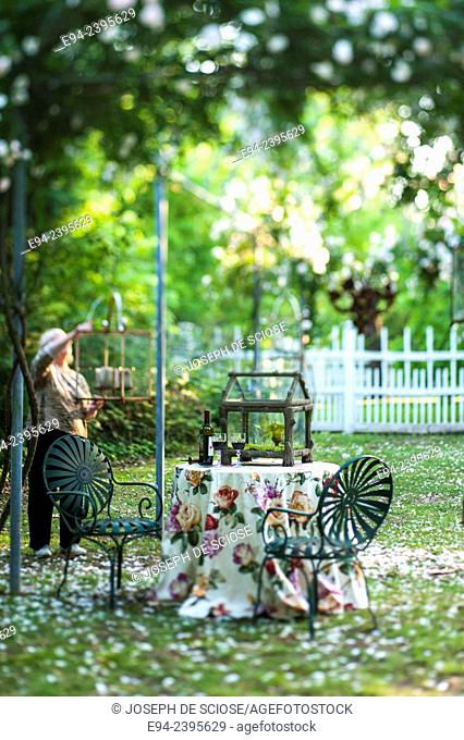 A table setting under a rose arbor with a fence in the background. Georgia USA
