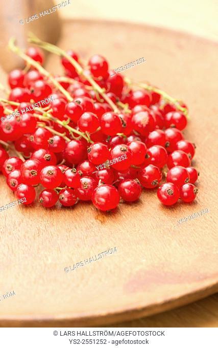 Closeup of red ripe redcurrant berries