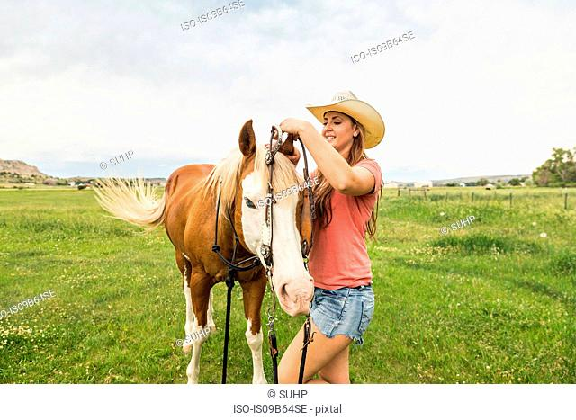 Young woman putting bridle on horse in ranch field, Bridger, Montana, USA