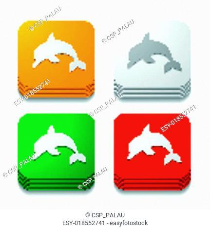 square button: dolphin