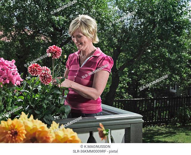 Woman gardening on balcony