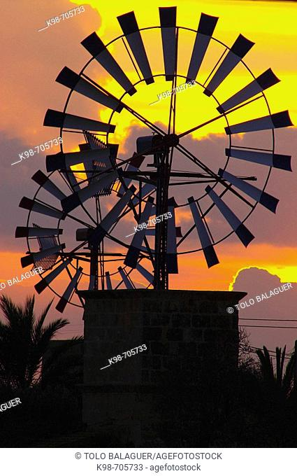 Windmill. Campos. Majorca. Balearic Islands. Spain