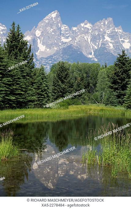 Water reflection of the Teton Range, taken from the end Schwabacher Road, Grand Teton National Park, Wyoming, USA