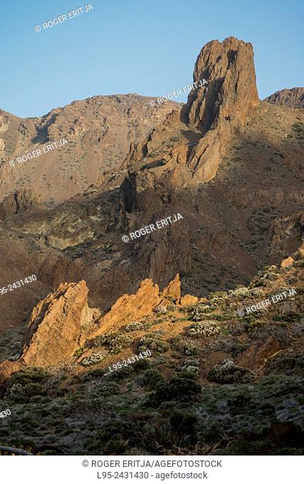 Aspect of Cañadas del Teide, a former crater of the primitive volcano