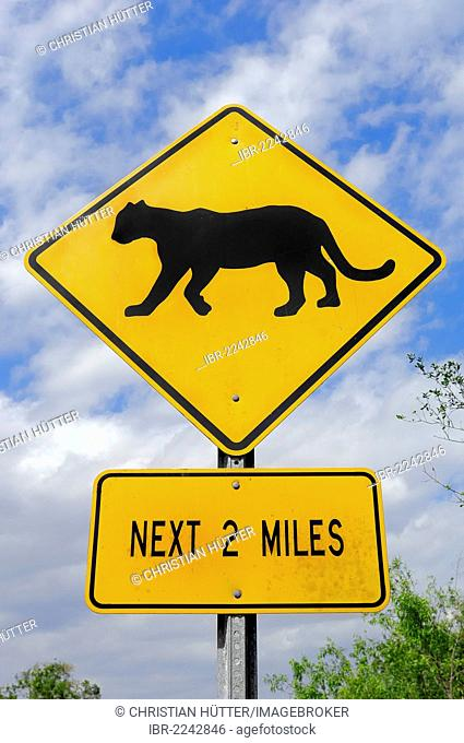 Street sign, Florida-Panther crossing, Everglades National Park, Florida, USA