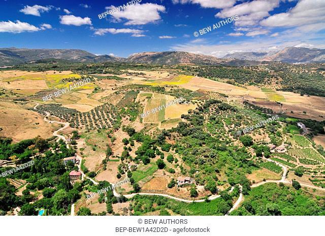 Scenic landscape near Ronda, Andalusia, Spain