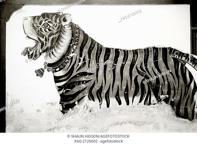 Street art of a tiger in Udaipur in Rajasthan in India in South Asia