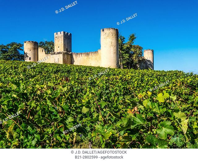France, Aquitaine, Gironde. Budos castle, XIIc., in the Graves wines district, of the Bordeaux wines area