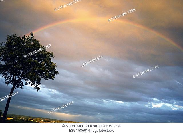 After a rainstorm a rainbow over the vineyards on the outskirts of Pezenas, France