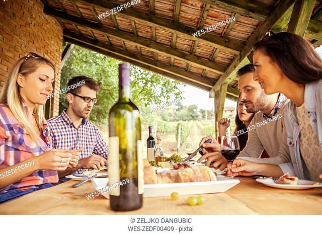 Friends socializing at outdoor table with red wine and cold snack