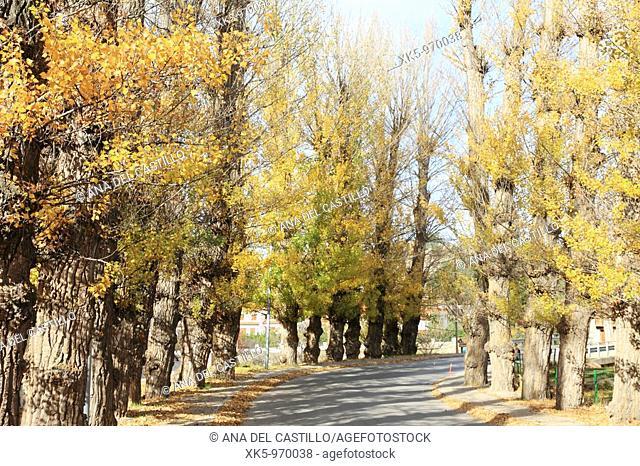 Virgen de la Vega village in autumn, Aragon, Teruel province, Spain