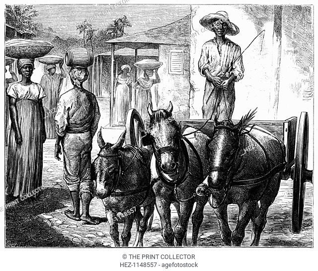 Street scene, Haiti, 19th century