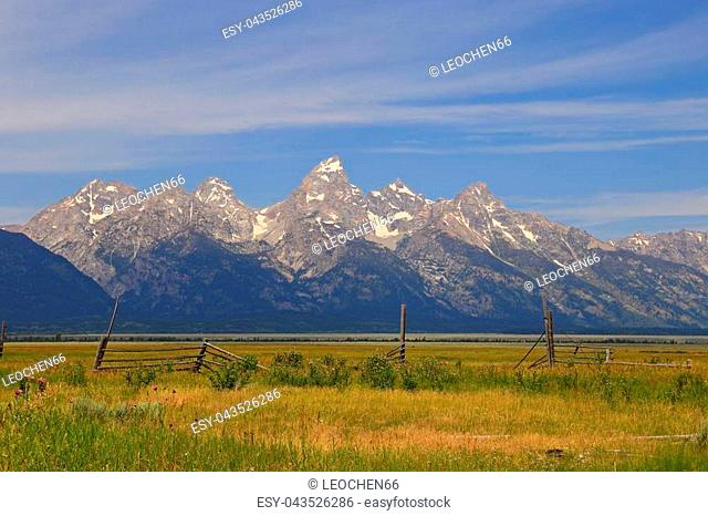 Scenic view in the Grand Teton National Park Wyoming USA