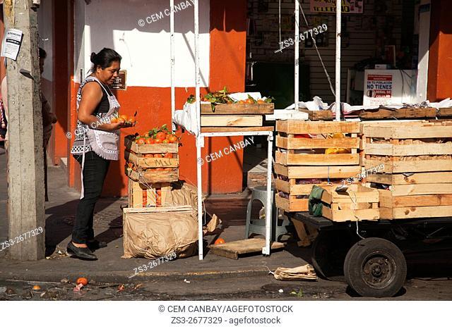 Vendor selling fresh mandarins at the market-mercado 20 de noviembre, Oaxaca, Oaxaca State, Mexico, North America