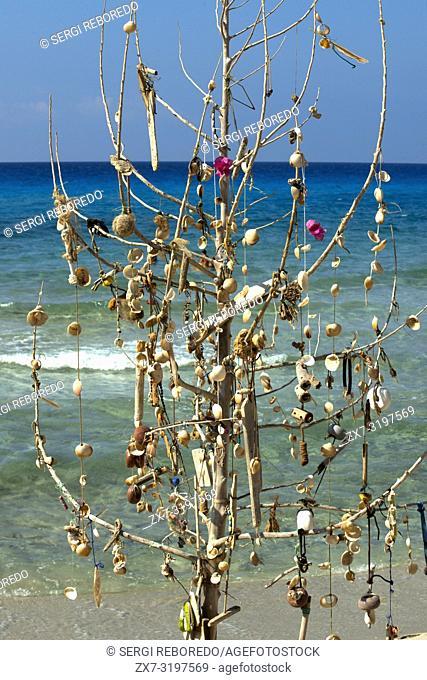 Hyppy tree at Migjorn beach, Formentera, Balears Islands, Spain. Hotel Riu la Mola. Holiday makers, tourists, Platja de Migjorn, beach, Formentera, Pityuses