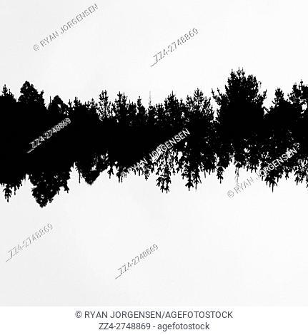 Music tree waveform background. Abstract noir nature landscape