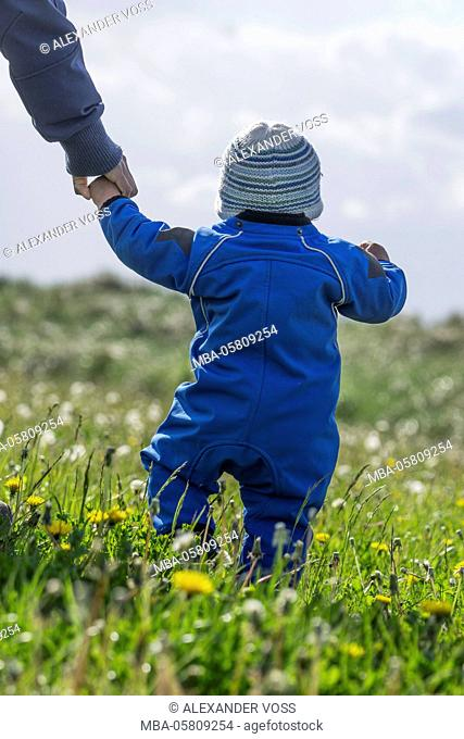 mother and child, exploring, adventure, the first steps, outdoors, meadow