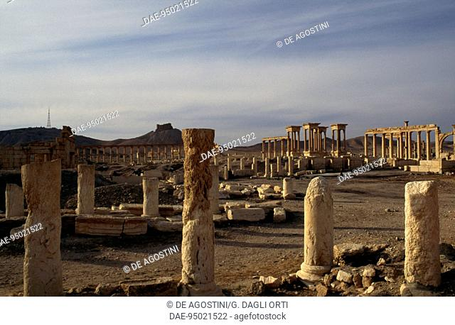 View of Palmyra archaeological site (UNESCO World Heritage List, 1980), near Tadmur, Syria