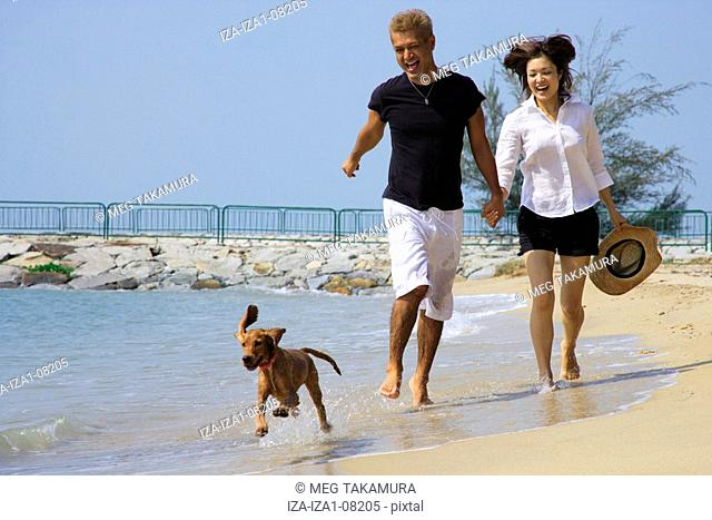Young woman and a mid adult man walking on the beach with a dog