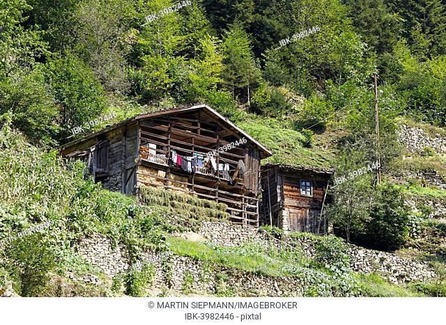 Traditional wooden house near Uzungöl, Trabzon Province, Kaçkar Mountains, Black Sea Region, Turkey