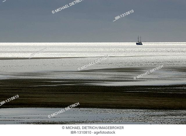 Shrimp boats in the Wadden Sea in Pellworm, North Frisian Islands, North Friesland District, Schleswig-Holstein, Germany, Europe