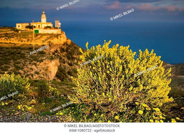 Mesa Roldan lighthouse  Carboneras  Almeria, Andalusia, Spain, Europe