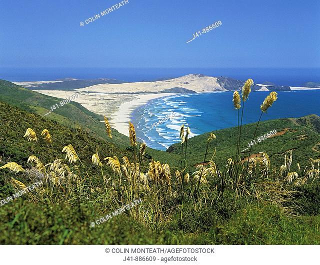 Cape Maria Van Diemen Northland New Zealand