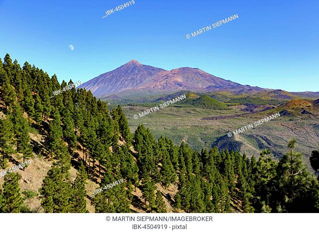 Volcano Pico del Teide and Pico Viejo, view from the Teno mountains, Tenerife, Canary Islands, Spain