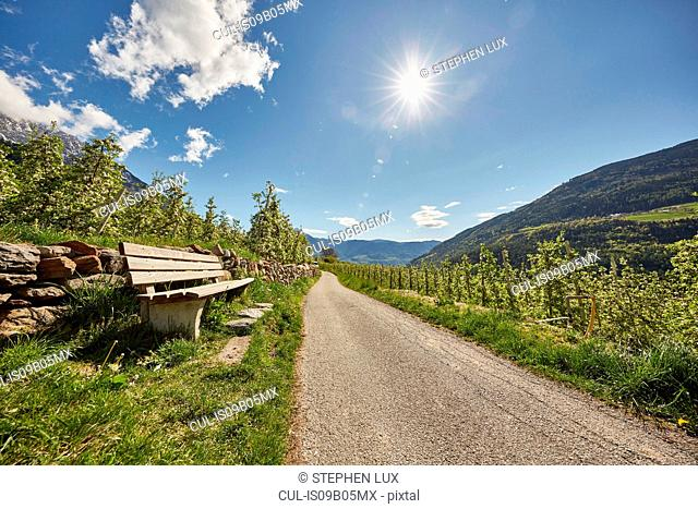 Bench beside road, Meran, South Tyrol, Italy