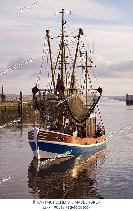Shrimp boat with drawn up gear entering in the harbor, Neuharlingersiel, Nationalpark Niedersaechsisches Wattenmeer, Lower Saxony Wadden Sea National Park