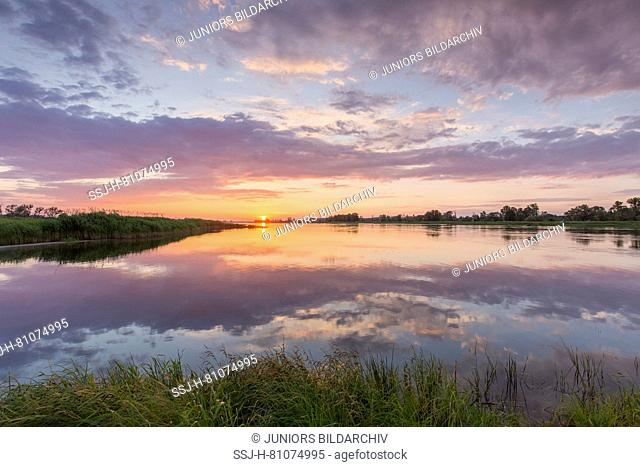Sunset at the river Oder. Oderbruch, Brandenburg, Germany