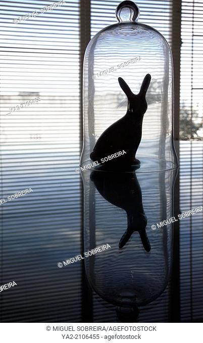 Rabbit in Bell Jar Ornament Reflection
