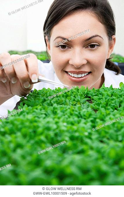 Female scientist researching on plants in a laboratory