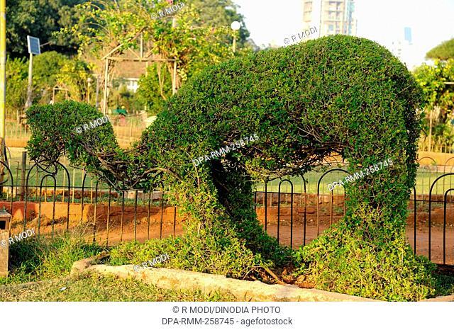 hanging garden malabar hill, mumbai, maharashtra, India, Asia