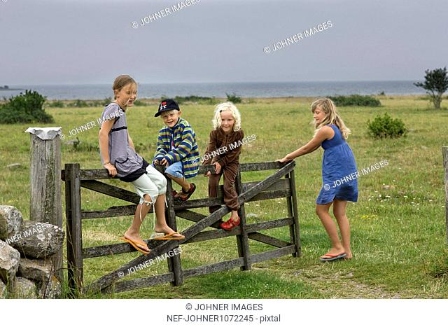 Children sitting on wooden gate