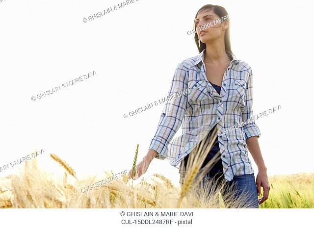 Woman walking in a wheat field