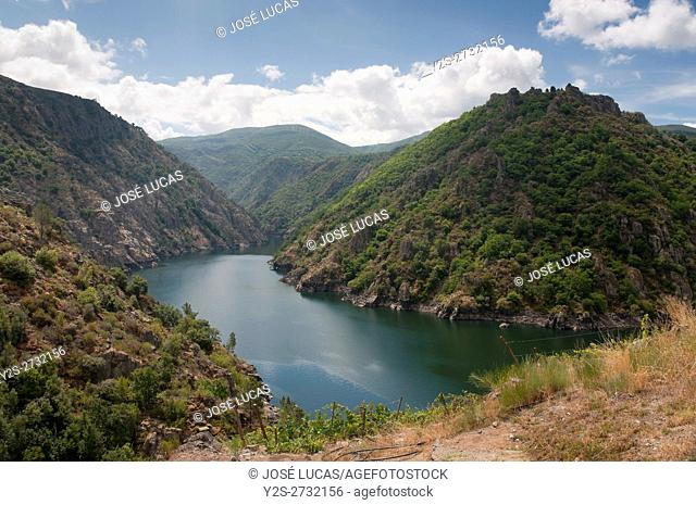 The Sil river Canyon, Sober, Lugo province, Region of Galicia, Spain, Europe