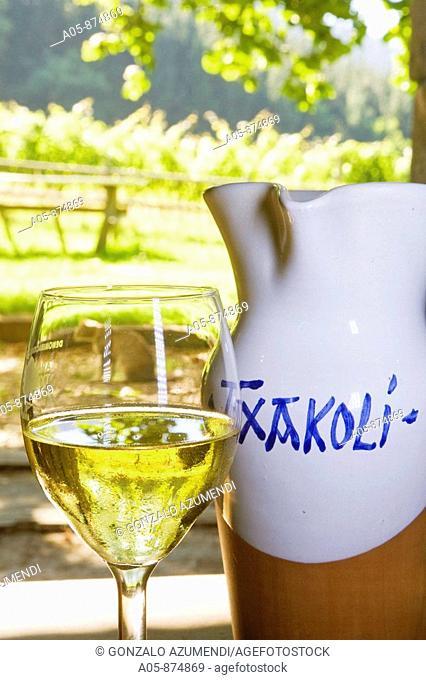 'Txacoli' wine in vineyard, Beldio Txakolina winey, Llodio. Alava, Basque Country, Spain
