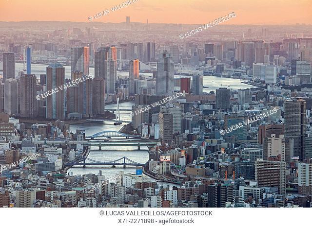 View of Sumidagawa river, Tokyo, Japan