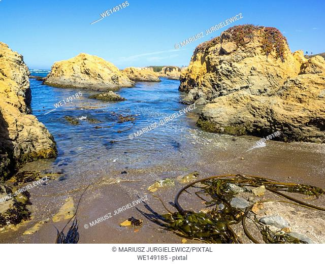 MacKerricher State Park is a state park in California in the United States. It is located three miles north of Fort Bragg in Mendocino County