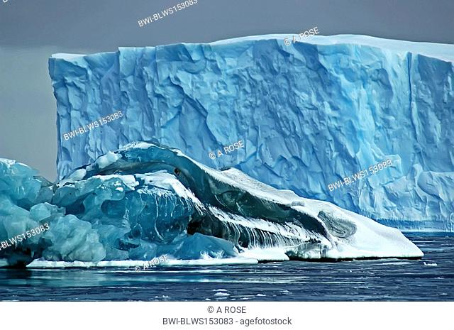 A larger blue iceberg in the background is partly hidden by a smaller so-called black iceberg in the foreground, the latter partly being covered by snow