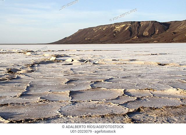 In San Ignacio Lagoon in Baja California Sur there were shallow plains but due to geological changes, the sea withdrew and became salt flats