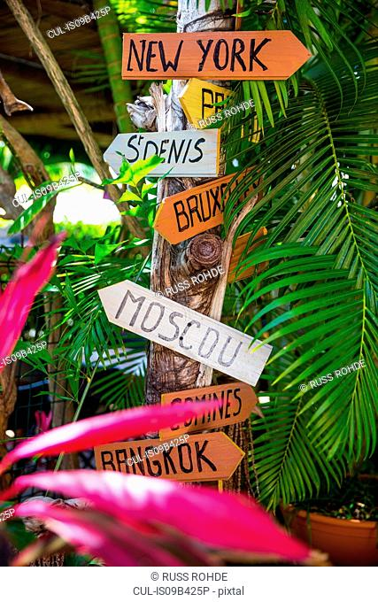 Direction signs for capital cities on tree trunk, Reunion Island