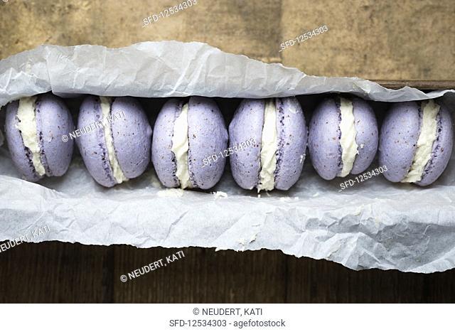 Vegan macaroons filled with white vanilla ganache