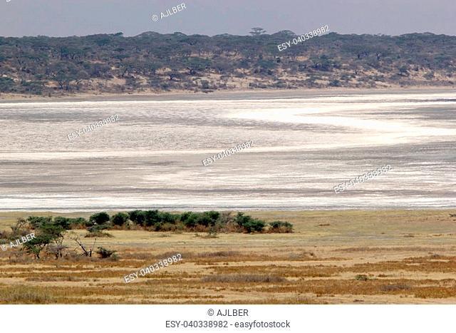 Lake Ndutu almost dry, Serengeti National Park, Tanzania