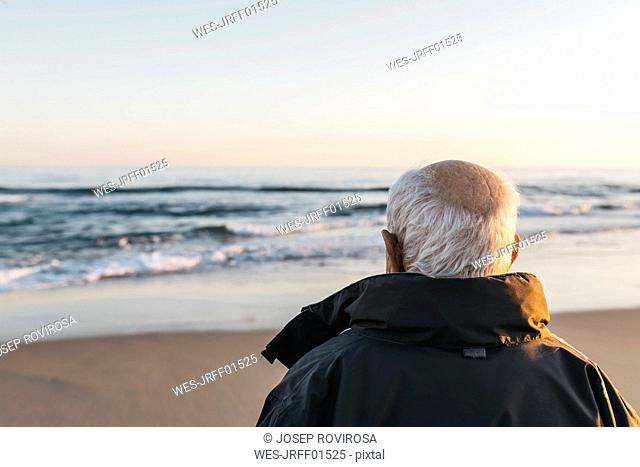 Senior man looking at the sea, rear view