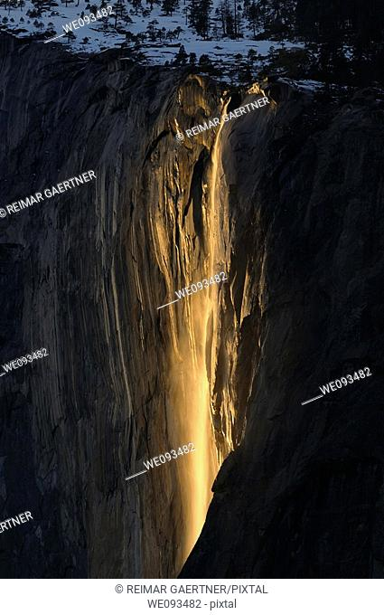 Horse Tail Fall on El Capitan lit by the last orange rays of sunlight seen from Yosemite Valley