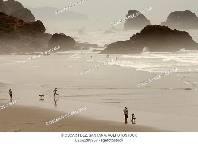 Indian Beach, Ecola State Park, Cannon Beach, Oregon, USA