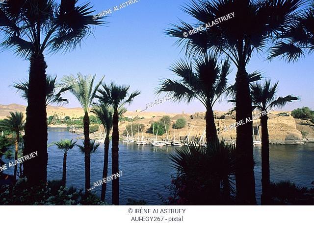 Egypte - Basse Nubie - Assouan - Corniche - Vue sur l'ile Elephantine