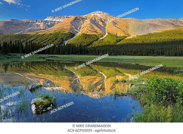 Canadian Rocky Mountains near Bow Summit, Banff National Park, Alberta, Canada